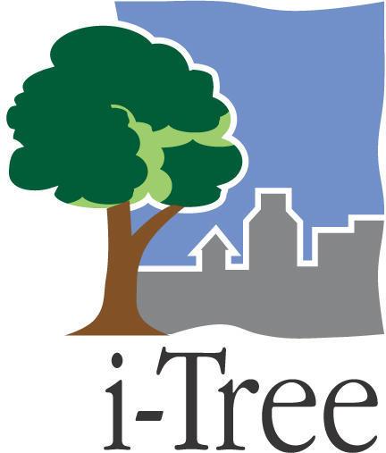 i-Tree Identity Servicemark - Davey Tree