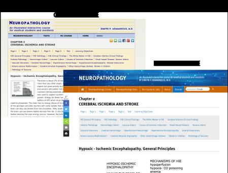 Neuropathology Responsive Web Redesign
