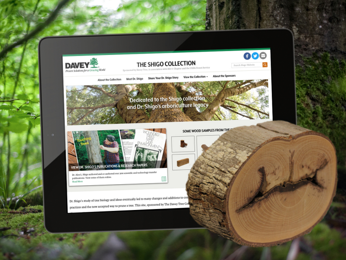 Shigo Collection Website - Davey Tree