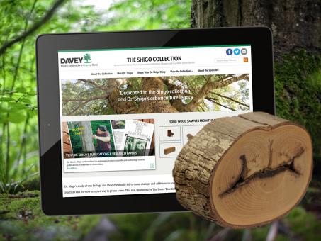 Shigo Collection Website - Davey Tree